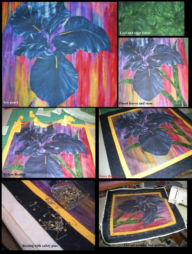 Iris panel 1