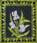 July 2012 2 Hot springs quilt show 061