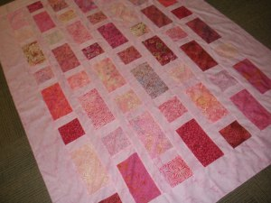 stuff July Sit and sew Conway 023