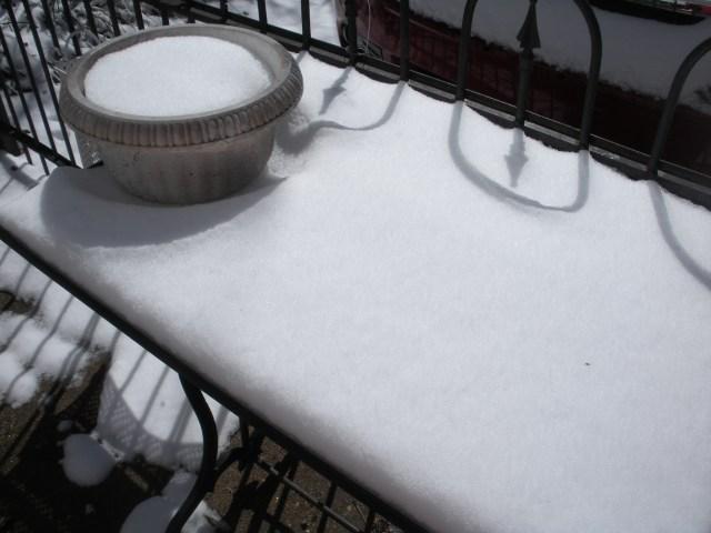 Snow CAQ 065