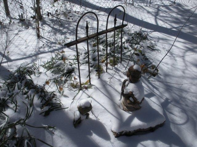 Snow CAQ 070
